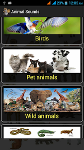 screenshot of Animal Sounds version 3.0