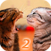 Download Ask Cat 2 Translator 1.5 APK