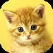 Download Baby Animals Game 1.9 APK
