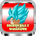 Download Best DBZ Wallpaper HD 1.0.0 APK