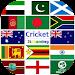 Download Cricket HD Highlights 1.1 APK