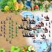 Download Empire Defense: Free Strategy Defender Games 4.0 APK
