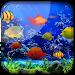 Download Fishes Live Wallpaper 2018 - Aquarium Koi Bgs 1.0.2 APK