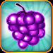 Download Fruit Blitz Free 1.1.20 APK