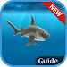 Download Guide : Hungry Shark Evolution 1.0 APK