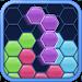 Download Hexus: Hexa Block Puzzle 1.37 APK