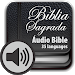 Download Holy Bible in Audio 2.2 APK