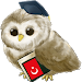 Download Learn Turkish 4.0 APK