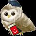 Download Learn Turkish 4.0 APK