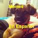 Download Memes en español 1.5 APK