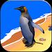 Download Penguin Simulator 1.1 APK