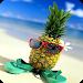 Download Pineapple Wallpapers 1.1 APK