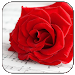 Download Romantic Pictures for Whatsapp 2.0 APK