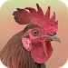 Download Rooster Sounds 2.0 APK
