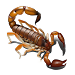 Download Scorpio - Live Wallpaper 1.1 APK