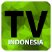 Download TV Online Indonesia Full HD 1.2 APK