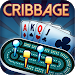 Download Ultimate Cribbage - Classic Card Game 1.6.3 APK