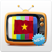 Download Viet Mobi TV 5.2 APK
