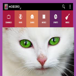 Download guide for mobdro pro 1 APK